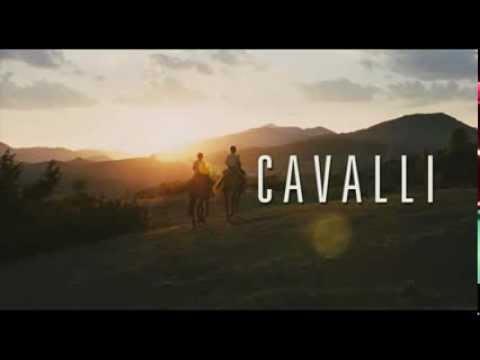 Cavalli – Trailer