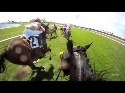 Antonio Gallardo Jockey Cam at Gulfstream Park Turf Sprint: Ride the Race with EquiSight in HD