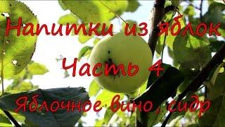 Напитки из яблок. Часть 4. Яблочное вино, сидр.