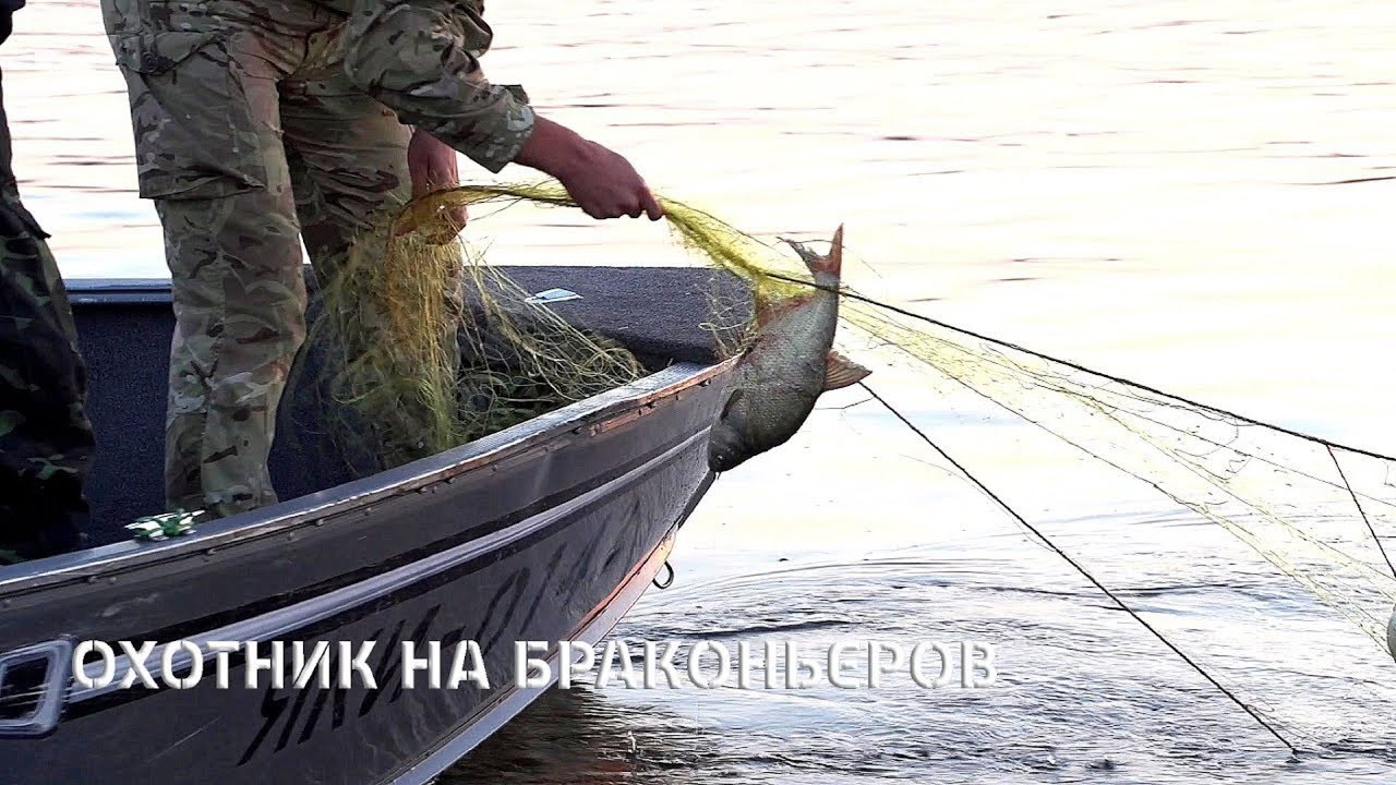 Рыболовные сети купить в москве. Товары для рыбалки почтой. Кастинговые сети,рыболовные китайские сети наложенным платежом. И крупных водных артериях хмао, новосибирской области, красноярского края. Также ее.