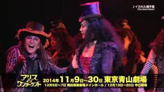 『アリス・イン・ワンダーランド』開幕! 11月30日(日)まで青山劇場にて...