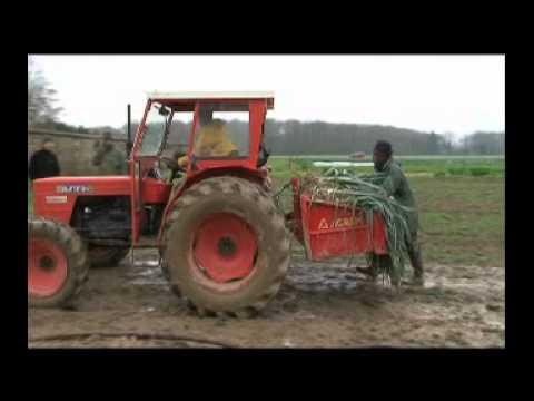 Un Eco trophées pour les Jardins de Cocagne en Vallée de Chevreuse ! - YouTube