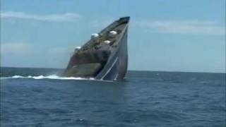 Sinking of and diving on the Dania, Mombasa, Kenya.