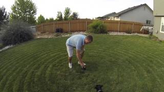 Self Mowing Lawn Mower