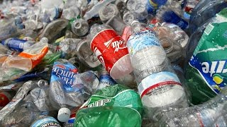 The Clothes You're Wearing Could Be Made Out Of Plastic Bottles