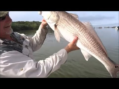 Catch Clean And Cook Blackened Redfish How To Make Blackened Redfish In Cast Iron
