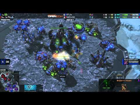 Dreamhack Open Winter 2014 Grand Final Day 3 - ForGG vs Life