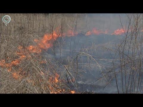 В Чулымском районе огонь подошёл к жилым домам