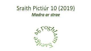 Sraith Pictiúr 10 (2019) - Madra ar strae