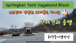 [캠핑장리뷰][텐트리뷰] Springbar Vagabond Bison Tent | 스프링바 배가본드 바이슨 …