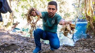 Nuestra Mejor Pesca y Cocina de Cangrejos En Un Hermoso Rio