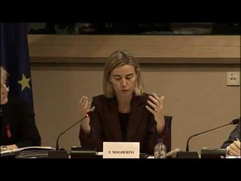 Mogherini at the European Parliament Development Committee (DEVE)