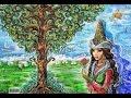 США 3193: 19 лет, Казахстан, Астана - девушка не знает как убедить родителей...