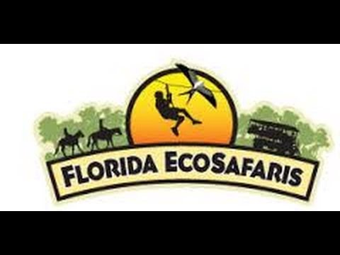 Дикая Флорида на траке - Eco Safaris Forever Florida USA  25