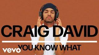 Craig David - You Know What ( Audio)