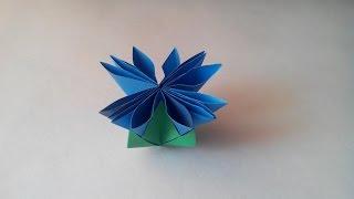 Васильки из бумаги (origami Chrysanthemum)