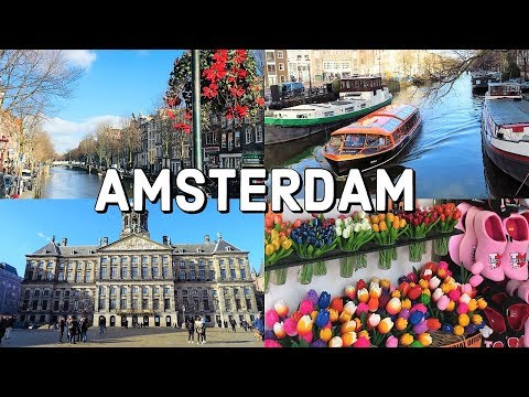 AMSTERDAM City Tour / The Netherlands