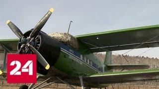 В Иркутской области испытают новый российский легкомоторный самолет - Россия 24