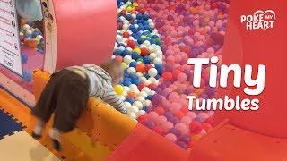 Tiny Tumbles