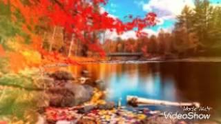 Просто осень!!!
