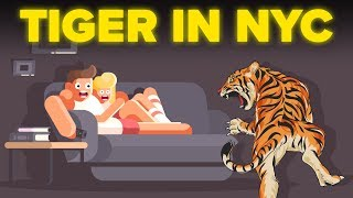 Living With A Tiger Man Keeping