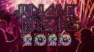 Download HAPPY NEW JUNGLE BREAKS 2020 ~ Nonstop Breakbeat Jungle Dutch Mixtape