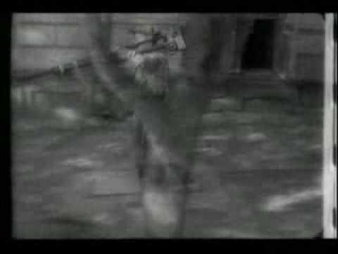 Xpansul and massi dl - nerd soul (original mix).avi