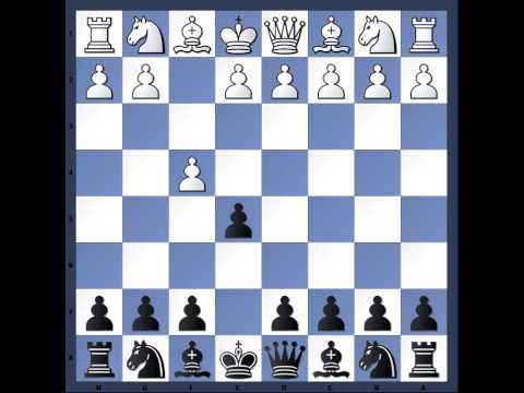Šachy Mat bláznů