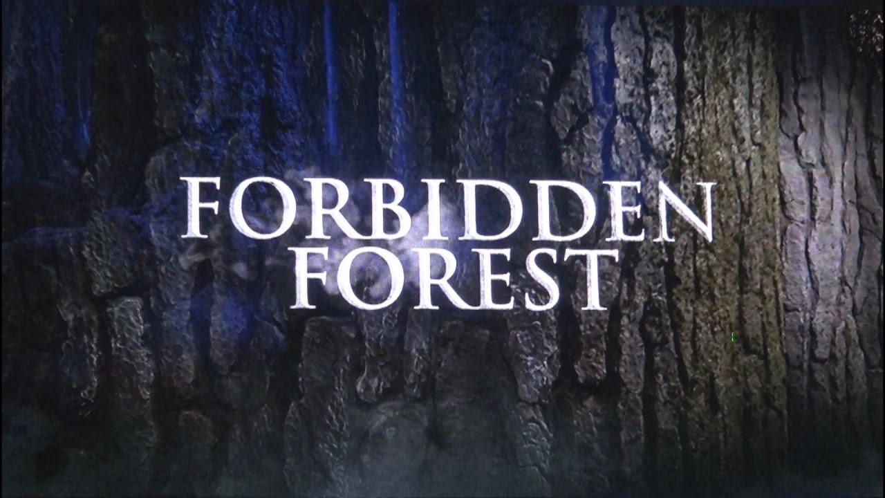 warner bros studio tour london forbidden forest harry potter opening 3 31 17 youtube