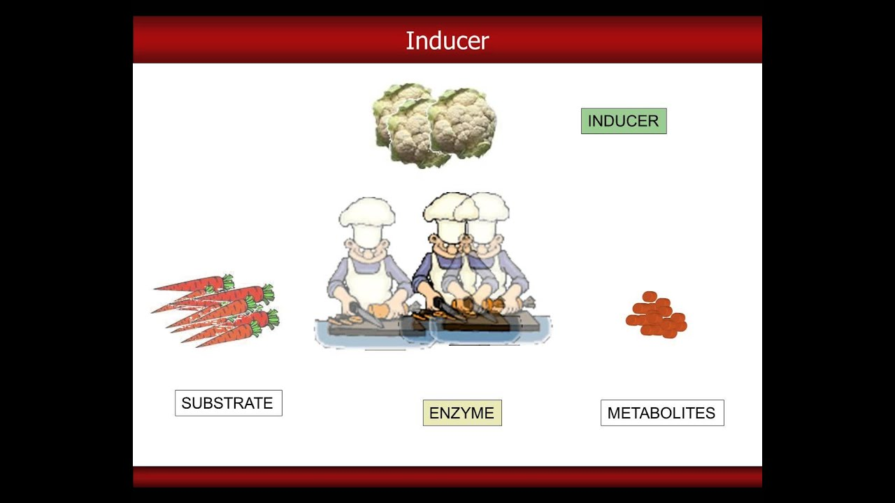 Entactogens that can be made by Aminizing your Kitchen's Spice