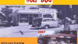 Wolf Dog Slide Show