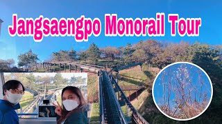 Jangsaengpo Monorail Tour and …