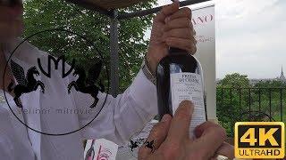 🍷Italian superior wine - FREISA DI CHIERI DOC SUPERIORE - VIGNA VILLA DELLA REGINA