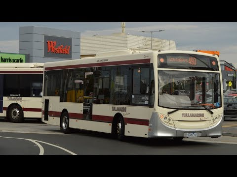 Trams & buses at Airport West - Melbourne Transport