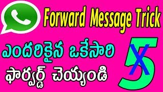 Whatsapp forward message trick | whatsapp latest tricks telugu | whatsapp hidden tricks