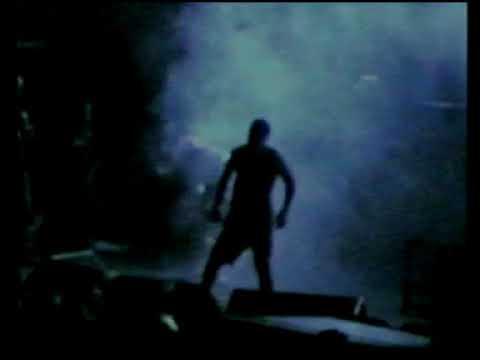 Pantera (live) - Festival Hall, Melbourne, Australia (November 14, 1994)