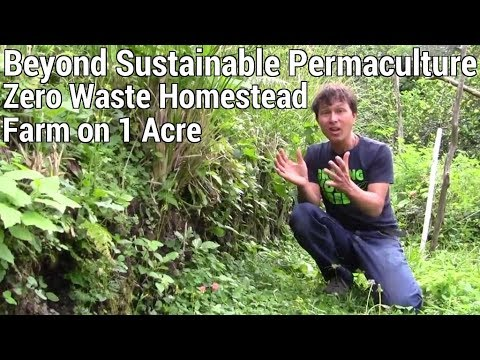 Beyond Sustainable 30 Year Old Permaculture Zero Waste Homestead Farm on 1 Acre