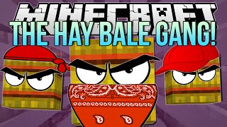 THE HAY BALE GANG   Minecraft: Hide N Seek Minigame!