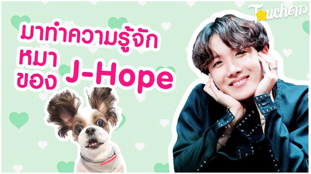 โฮปบี้มิกกี้ : มาทำความรู้จักน้องหมาสุดน่ารักของเจโฮป BTS
