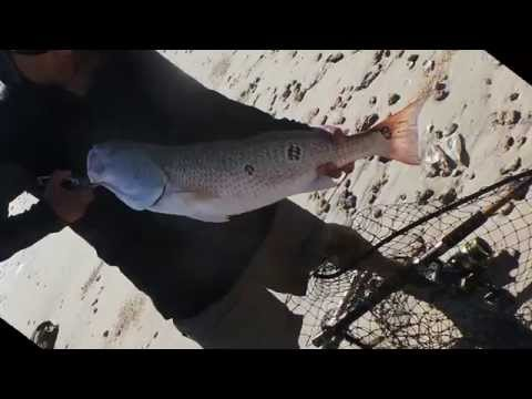 Fishing Bolivar And Rollover Pass