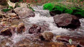 Живая вода. Красивая природа под приятную музыку.(Живые пейзажи, расслабляющая музыка, шум водопада и пение птиц. Релакс видео природа., 2016-02-05T19:46:47.000Z)