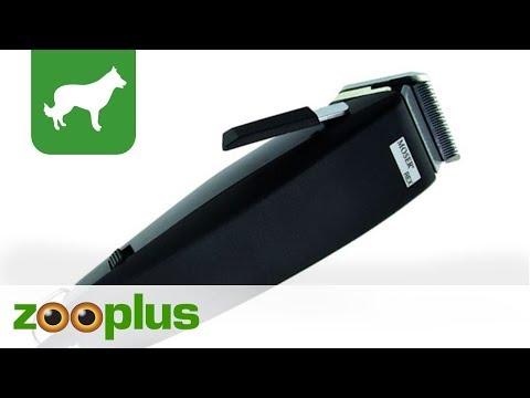 Dog Shearing Machine | Moser Rex | zooplus.co.uk