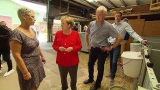 WAHLVERSPRECHEN: Merkel spricht mit Milchbauern über deren Sorgen