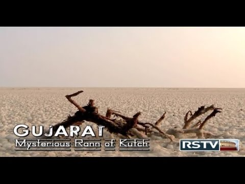 NATIONAL SECURITY: BSF in Mysterious Rann of Kutch