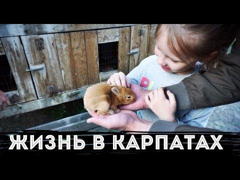 Украинское село Дом в...