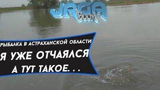 Рибалка в Астраханській області Я вже зневірився,а тут ТАКЕ. . .
