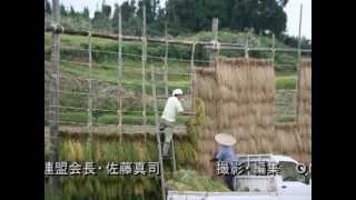 上越地域の米作り~お米ができるまで~