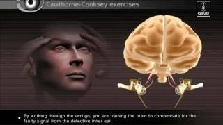 VRT - Vestibular Rehabilitation Therapy