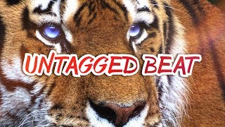 """Tiger"" UNTAGGED Hard Trap Beat 2018 / Ethnic Dope Rap Instrumental Free (Prod. Ihaksi)"
