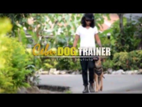 Cebu Dog Trainer with Jojo Bautista